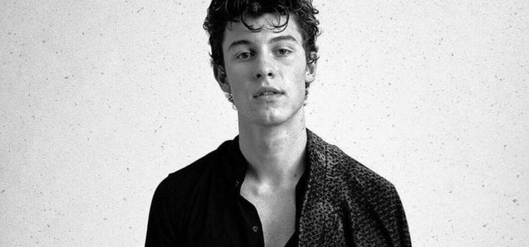 Shawn Mendes To Embark On International Arena Tour
