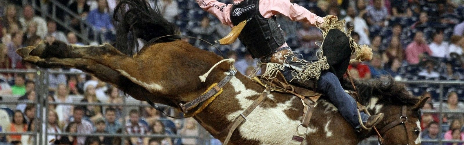 Houston Livestock Show, Rodeo Scores Top Spot On Weekend Best-Sellers
