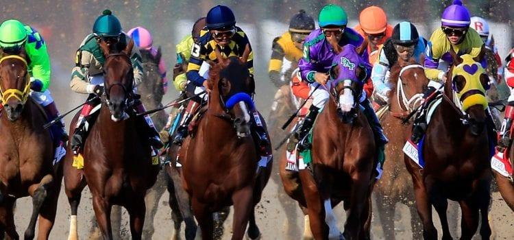Kentucky Derby, Oaks Takes No. 1 Spot On Thursday Best-Sellers