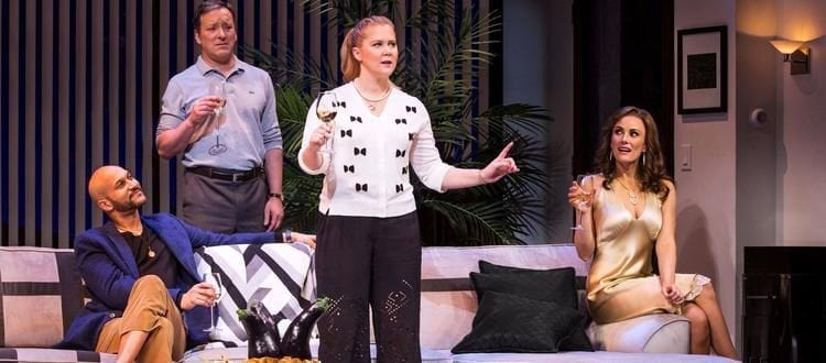 Meteor Shower with Amy Schumer Receives Mixed Reviews